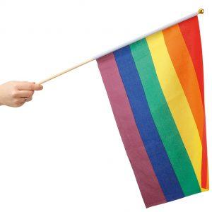 Köp regnbåge hand flag 30 x 40 cm festtillbehör | Materialbutiken