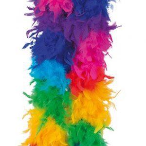 Köp regnbåge fjäderboa för festtillbehör | Materialbutiken